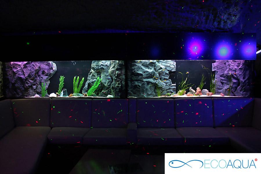 Aquarium at the caffe