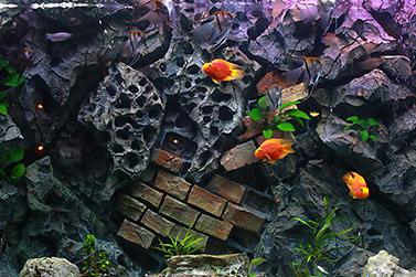 Alle 12 Monate - Aquarien Bedienungsanletung