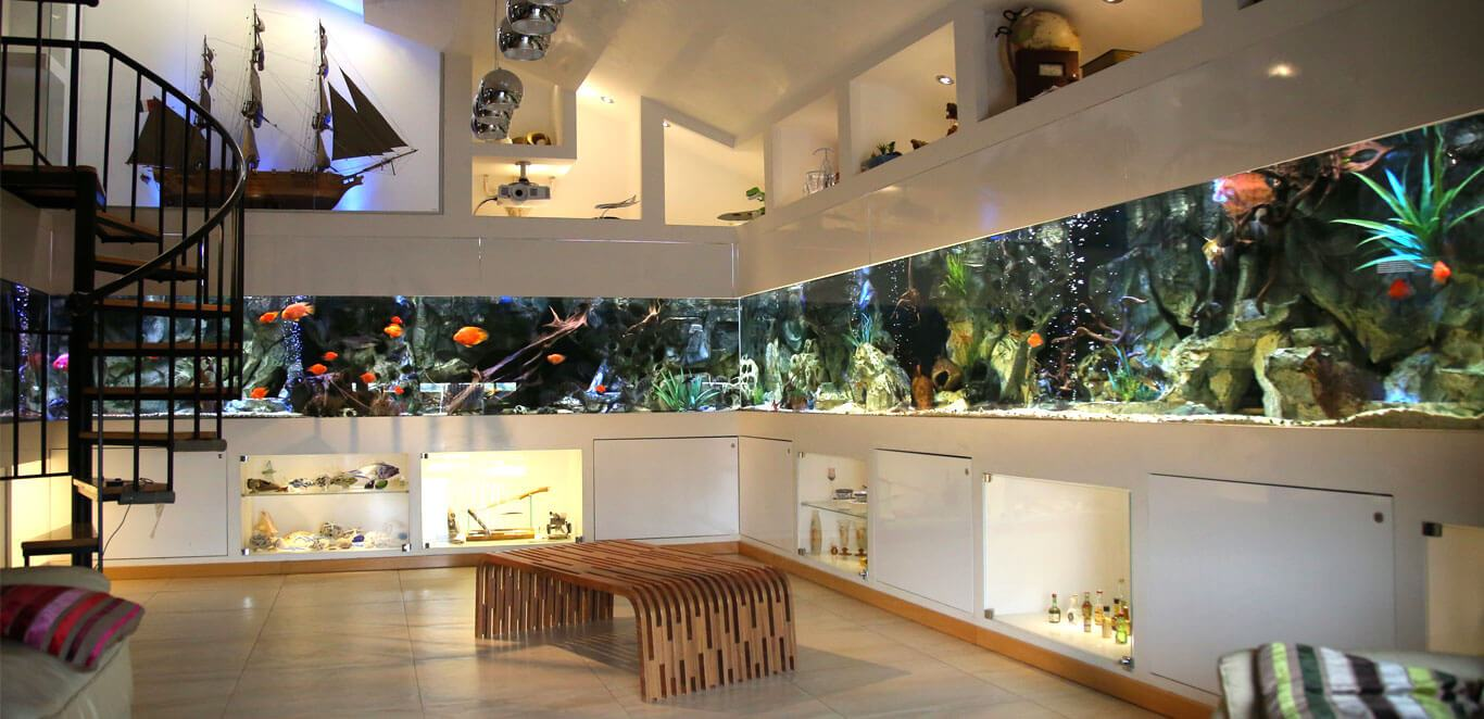 Custom made aquariums